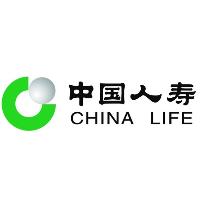 中国人寿平果支公司新部门